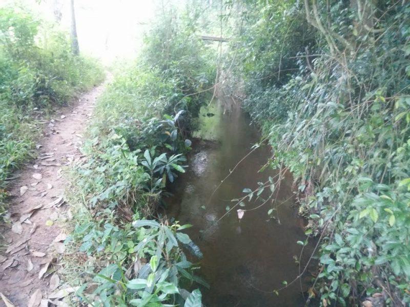 path-canal
