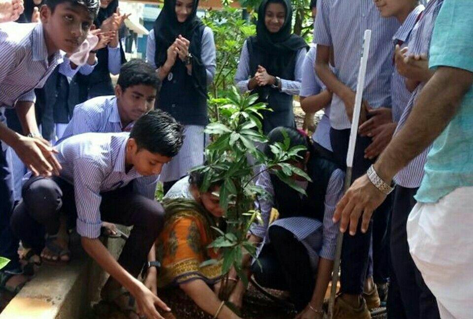 donate-trees