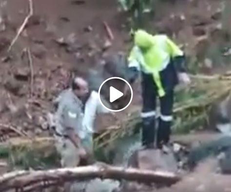 police-rescue