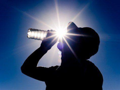 sun-drinking-water