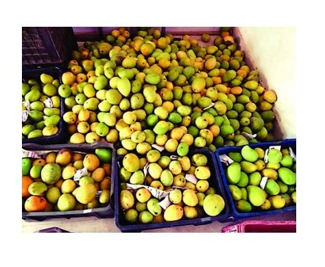 adulterated-fruit