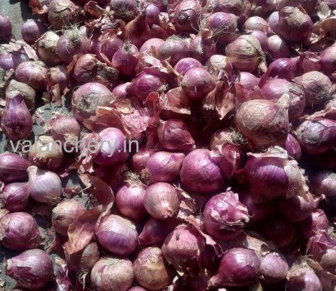 onion-valanchery