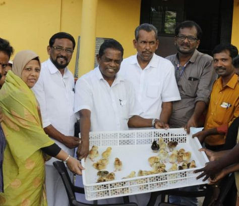 poultry-athavanad