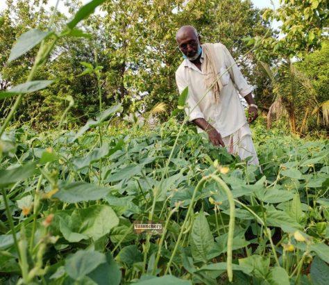 kunjippa-farmer-kuttippuram