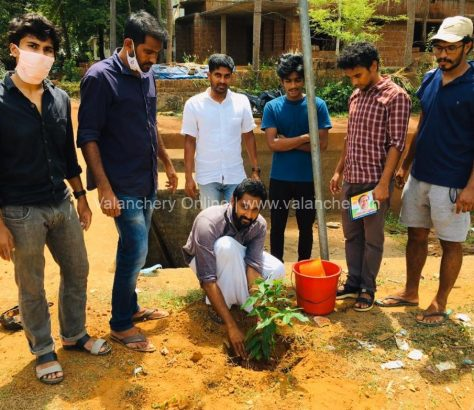 rajeev-gandhi-tree-maramkunnu