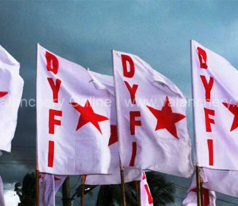 dyfi-flag